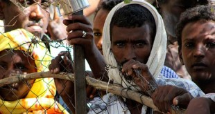 Eritrean Refugees at Shagarab Refugees camp in Kassala (World Bulletin)